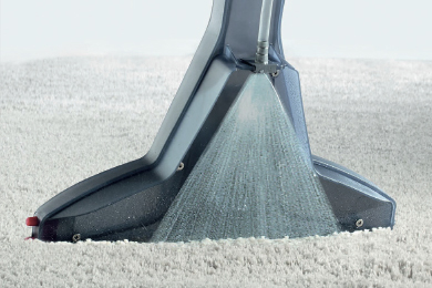 THE VACUUM CLEANER FOR PET HAIR